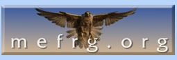 Middle East Falcon Research Group
