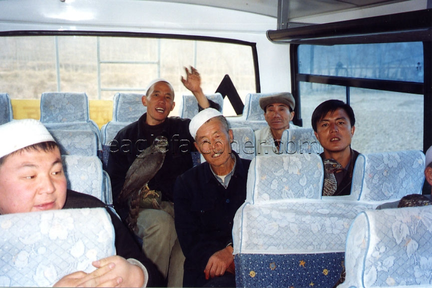 Bus full of Chinese Falconers