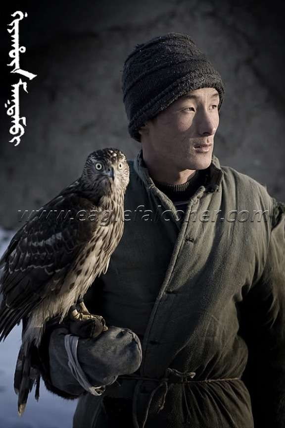 Falconry in Manchuria